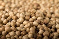 Pile de poivre noir sec (lat Nigrum de joueur de pipeau) Photographie stock libre de droits