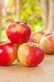 Pile de pommes fraîches de ripr sur la table en bois dans le jardin image libre de droits