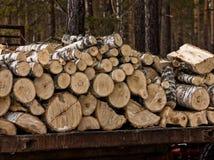 Pile de rondins en bois naturels fond de coupe en bois de pile Photo stock