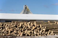 Pile de rondins par la scierie Photographie stock libre de droits