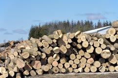 Pile de rondins par la scierie Image stock