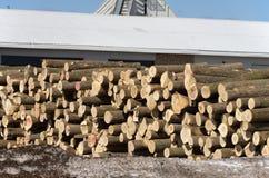 Pile de rondins par la scierie Photographie stock