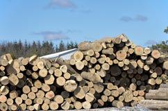 Pile de rondins par la scierie Image libre de droits
