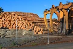 Pile de rondins de pin prêts pour l'exportation photographie stock libre de droits