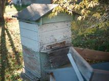 Pile de ruches image stock