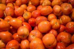 Pile de tomate Photographie stock