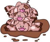 Pile de trois piggies dans un magma de boue Images stock