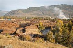Pile del ceppo, mulino del legname, Merritt BC Fotografia Stock
