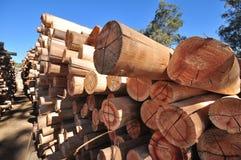 Pile del legname Fotografia Stock