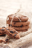 Pile of delicious chocolate chip cookies Royalty Free Stock Images