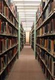 Pile delle biblioteche Fotografia Stock