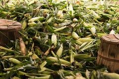 Pile des épis de blé verts avec les cosses et la soie photographie stock