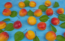 Pile des abricots rouges mûrs sur la table en bois ; escroquerie rurale de vintage images stock