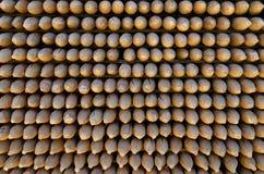 Pile des bâtons aigus Photos libres de droits