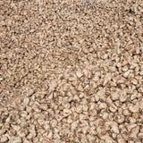 Pile des betteraves à sucre Photo libre de droits