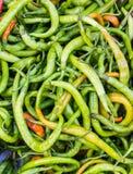 Pile des chilis verts Images libres de droits