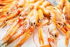 Pile des crevettes fraîches rouges Images libres de droits