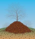 Pile des feuilles ratissées d'automne Photographie stock libre de droits