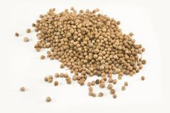 Pile des graines de coriandre Photographie stock libre de droits