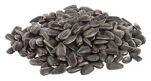 Pile des graines de tournesol d'isolement Image stock