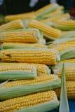 Pile des grains crus frais au marché dehors Photographie stock libre de droits