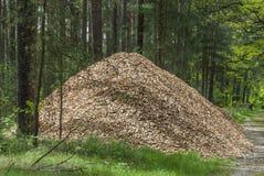 Pile des granules en bois Photos libres de droits