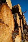 Pile des logarithmes naturels de bois de construction de l'enregistrement photographie stock libre de droits