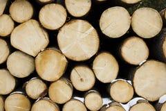 Pile des logarithmes naturels en bois prêts pour l'hiver Photos libres de droits