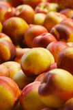 Pile des nectarines Photographie stock