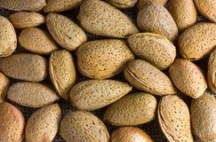 Pile des noix d'amande Image stock