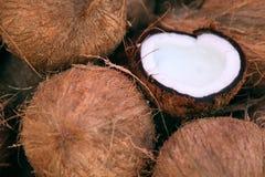 Pile des noix de coco Image stock