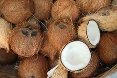 Pile des noix de coco sur le marché de nourriture de l'Inde Photographie stock libre de droits