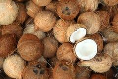 Pile des noix de coco sur le marché de nourriture de l'Inde Photographie stock