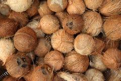Pile des noix de coco sur le marché de nourriture de l'Inde Photos stock