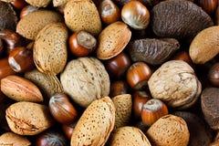 Pile des noix mélangées Photographie stock