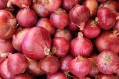 Pile des oignons rouges Photos libres de droits