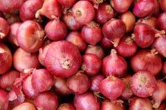 Pile des oignons rouges Image libre de droits