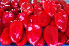 Pile des poivrons rouges sur le marché Photos libres de droits