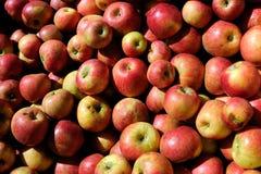 Pile des pommes Photos libres de droits