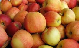 Pile des pommes dans une stalle du marché Image libre de droits