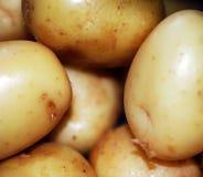 Pile des pommes de terre Images stock