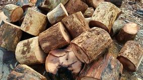 Pile des rondins coupés dispersés Images stock