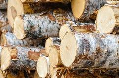 Pile des rondins de bois de construction de bouleau Image stock