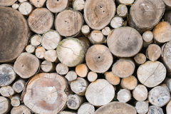 Pile des rondins en bois Image stock