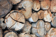 Pile des rondins en bois photo libre de droits