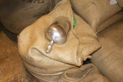 Pile des sacs de toile de jute remplis de grains de café avec un ouvert et de scoop sur le dessus photographie stock libre de droits
