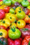 Pile des tomates d'héritage photographie stock