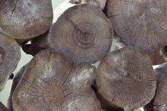 Pile des tronçons d'arbre, structure en bois Les lances des arbres énormes sont empilées dans une scierie Notation légère de fond photos stock