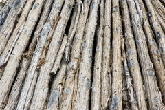 Pile des troncs d'arbre Photo stock