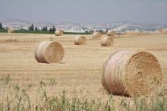 Pile di fieno nel campo con le montagne nei precedenti immagine stock